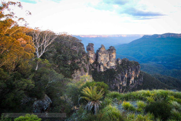 Three Sisters at Echo Point surrounded by ferns and gumtrees