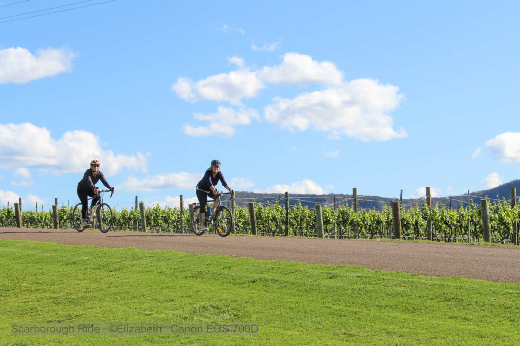 Two girls riding down hill on bikes past grape vines