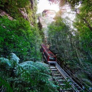 Scenic Railway Blue Mountains half day tour